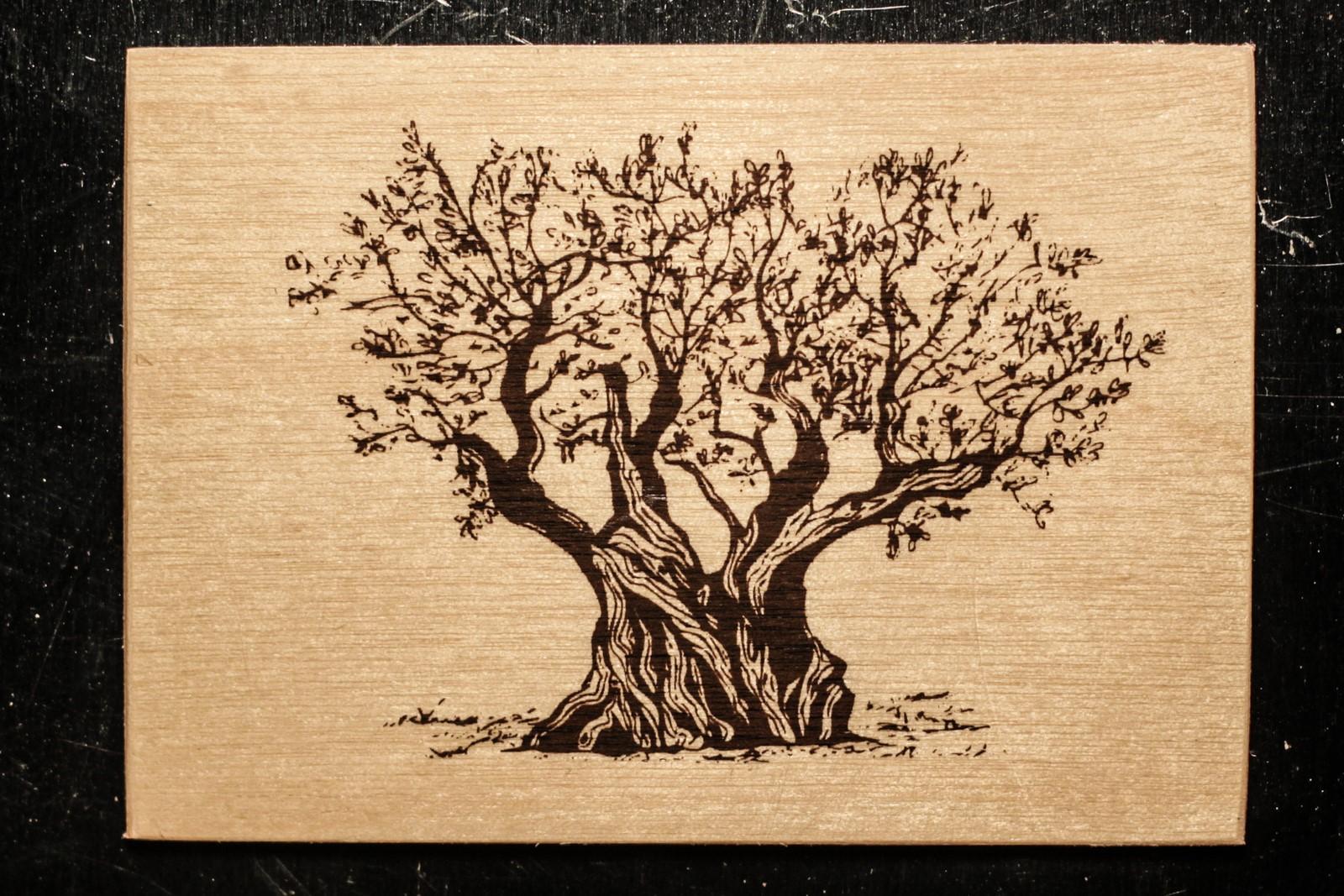 magnet en bois-micropanorama-olivier